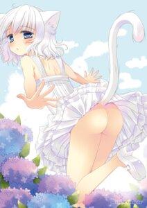 Rating: Questionable Score: 49 Tags: animal_ears ass dress nekomimi nopan summer_dress tail tamakake User: blooregardo