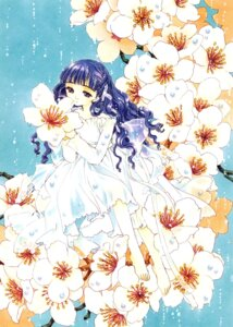 Rating: Safe Score: 12 Tags: card_captor_sakura clamp daidouji_tomoyo dress feet User: Share