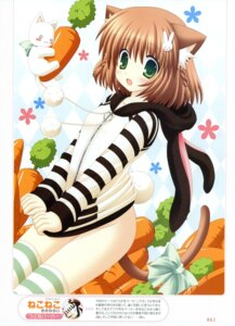Rating: Questionable Score: 60 Tags: animal_ears bottomless neko nekomimi nekoneko tail thighhighs User: crim