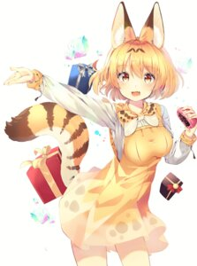 Rating: Safe Score: 32 Tags: animal_ears animal_ears_(artist) dress kemono_friends serval tail User: Mr_GT