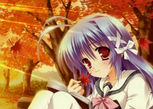 Rating: Safe Score: 13 Tags: aoi_kokona hinamatsuri_touko mikoko User: Radioactive
