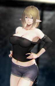 Rating: Questionable Score: 35 Tags: cleavage elf erect_nipples hayabusa no_bra pointy_ears signed User: mash