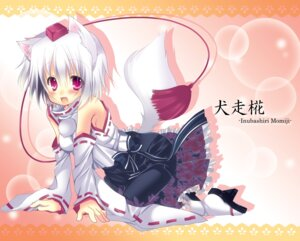 Rating: Safe Score: 21 Tags: animal_ears hikanyan inubashiri_momiji tail touhou User: Mr_GT