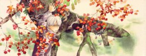 Rating: Safe Score: 5 Tags: ginko male mushishi urushibara_yuki User: Radioactive