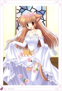 Rating: Safe Score: 34 Tags: animal_ears cleavage dress neko nekomimi nekoneko skirt_lift stockings tail thighhighs wedding_dress User: crim