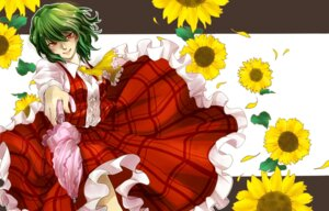 Rating: Safe Score: 4 Tags: kazami_yuuka seitaka touhou User: Mr_GT