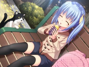 Rating: Safe Score: 47 Tags: kageira neko thighhighs wallpaper User: fairyren