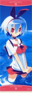 Rating: Safe Score: 27 Tags: disgaea harada_takehito pleinair stick_poster User: admin2