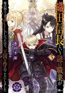 Rating: Safe Score: 20 Tags: armor dress pointy_ears shibano_kaito sword tagme User: kiyoe