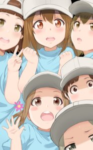 Rating: Safe Score: 25 Tags: hataraku_saibou hews kesshouban User: RyuZU