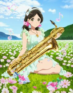 Rating: Questionable Score: 59 Tags: dress hibike!_euphonium jpeg_artifacts ogasawara_haruka User: akliae