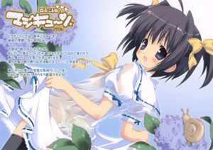 Rating: Questionable Score: 30 Tags: dress frill_frill loli morinaga_korune pantsu see_through shimapan summer_dress thighhighs User: midzki