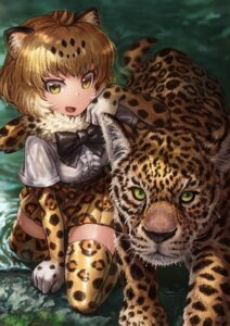 Rating: Safe Score: 23 Tags: animal_ears jaguar_(kemono_friends) kemono_friends lain thighhighs wet User: Mr_GT