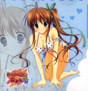 Rating: Safe Score: 65 Tags: akane_iro_ni_somaru_saka bikini cleavage nagase_minato ryohka swimsuits User: fireattack
