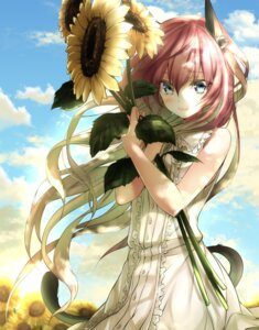 Rating: Safe Score: 45 Tags: animal_ears dies_irae dress mia_(gute-nacht-07) nekomimi summer_dress tail User: Mr_GT
