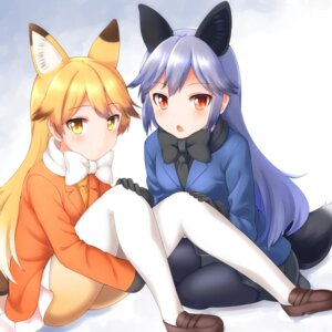 Rating: Safe Score: 27 Tags: animal_ears ezo_red_fox faubynet kemono_friends pantyhose silver_fox tail User: nphuongsun93