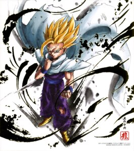 Rating: Safe Score: 7 Tags: dragon_ball son_gohan User: drop