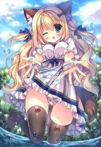 Rating: Questionable Score: 25 Tags: animal_ears dress kotamaru pantsu skirt_lift tagme tail thighhighs wet User: Mr_GT