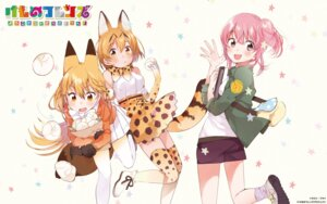Rating: Safe Score: 25 Tags: animal_ears ezo_red_fox fly kemono_friends nana_(kemono_friends) pantyhose serval tail thighhighs User: Mr_GT