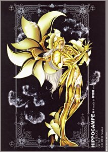Rating: Safe Score: 6 Tags: future_studio male saint_seiya sea_horse_baian User: Radioactive