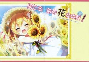 Rating: Safe Score: 16 Tags: amamine animal_ears crease dress nekomimi summer_dress tagme tail User: Hatsukoi