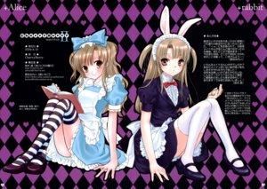 Rating: Safe Score: 19 Tags: alice alice_in_wonderland animal_ears bunny_ears hime_ichigo mainichi_nichiyoubi noda_mirei sakuragi_akira thighhighs User: petopeto