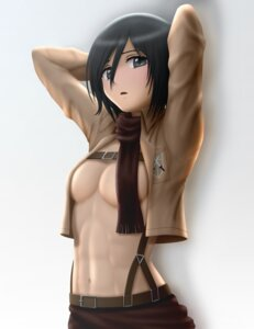 Rating: Questionable Score: 59 Tags: breasts cleavage mikasa_ackerman no_bra open_shirt shingeki_no_kyojin siraha User: dyj