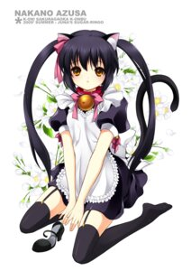 Rating: Safe Score: 43 Tags: animal_ears juna k-on! nakano_azusa nekomimi stockings thighhighs User: charunetra