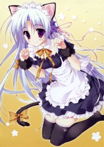 Rating: Safe Score: 89 Tags: animal_ears hana_x_hana maid nekomimi ryohka shinonome_hana tail thighhighs User: MAXX