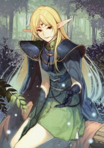 Rating: Safe Score: 19 Tags: deedlit record_of_lodoss_war tagme upscaled User: Radioactive