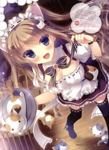 Rating: Safe Score: 135 Tags: animal_ears cleavage neko nekomimi nekomori_mike nyan_cafe_macchiato skyfish_poco tail thighhighs waitress yukie User: drop