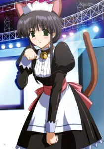 Rating: Safe Score: 4 Tags: animal_ears comic_party hasebe_aya nakahara_ryuuta nekomimi tail User: Share