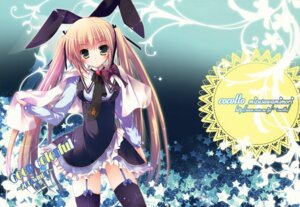 Rating: Safe Score: 46 Tags: animal_ears bunny_ears cocotto mizusawa_mimori stockings thighhighs User: Twinsenzw
