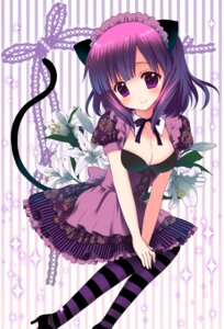 Rating: Safe Score: 47 Tags: animal_ears cleavage kuro. nekomimi tail thighhighs User: blooregardo