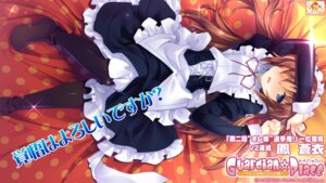 Rating: Safe Score: 31 Tags: guardian☆place maid ootori_aoi pantyhose skyfish tsurugi_hagane wallpaper User: blooregardo