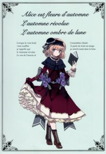 Rating: Safe Score: 17 Tags: alice_margatroid cierra_(artist) dress gothic_lolita heels lolita_fashion ringlet skirt_lift touhou User: fireattack