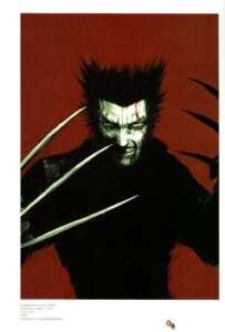 Rating: Safe Score: 4 Tags: male tsutomu_nihei wolverine x-men User: fireattack