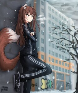 Rating: Safe Score: 11 Tags: animal_ears gym_uniform holo nyaxxy spice_and_wolf tail User: dick_dickinson