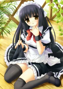 Rating: Safe Score: 54 Tags: himenomiya_kaguya kanekiyo_miwa maid stellar_theater thighhighs User: Kalafina