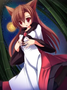 Rating: Safe Score: 20 Tags: animal_ears imaizumi_kagerou liya touhou User: Radioactive