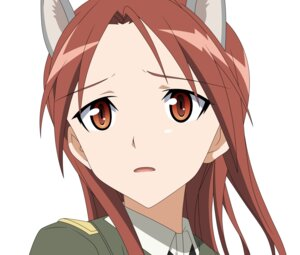 Rating: Safe Score: 13 Tags: minna_dietlinde_wilcke strike_witches uniform vector_trace User: Pilad