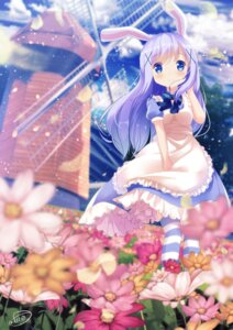 Rating: Safe Score: 44 Tags: animal_ears bunny_ears chinomaron dress gochuumon_wa_usagi_desu_ka? kafuu_chino signed thighhighs User: Mr_GT