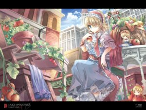 Rating: Safe Score: 29 Tags: alice_margatroid fruit_punch touhou wallpaper User: Radioactive