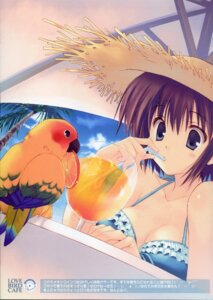 Rating: Safe Score: 16 Tags: bikini mitsumi_misato swimsuits User: cheese