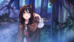 Rating: Safe Score: 45 Tags: animal_ears kento1202 wallpaper User: Mr_GT