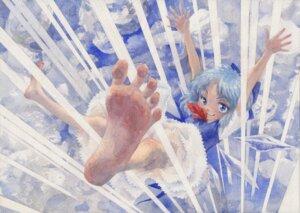 Rating: Safe Score: 10 Tags: cirno feet misawa_hiroshi touhou User: Radioactive
