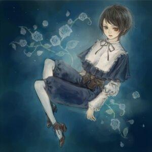 Rating: Safe Score: 3 Tags: heterochromia rozen_maiden souseiseki yukishiro User: charunetra