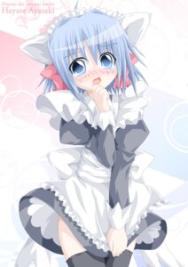 Rating: Questionable Score: 23 Tags: animal_ears ayasaki_hayate hayate_no_gotoku kagerou0607 maid nekomimi thighhighs trap User: charunetra