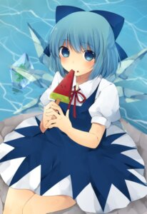 Rating: Safe Score: 16 Tags: ari_suzushi cirno touhou User: mahoru