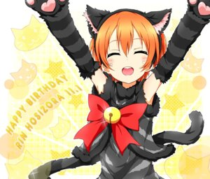 Rating: Safe Score: 38 Tags: animal_ears hoshizora_rin karamone-ze love_live! nekomimi tail User: 椎名深夏